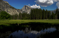 Half Dome and the Meadow